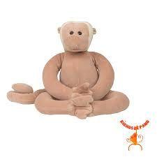 Macaco Aranha G