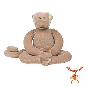 Macaco Aranha P