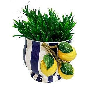 682 - Cachepot G com Arranjo de limão siciliano Listrado de Branco e Azul H=25 cm, L= 28,5 cm, C= 32 cm