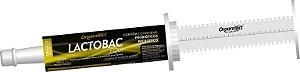 Lactobac Equi 88 gr