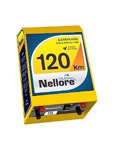 Eletrificador Nellore 120 KM 12V