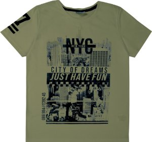 Camiseta Juvenil Menino Nova York Verde