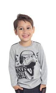 Camiseta Infantil Menino Dinossauro Mescla