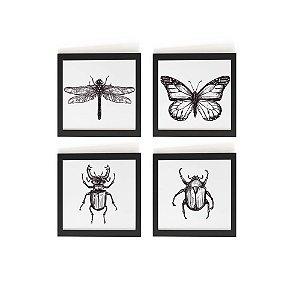 Conjunto Quadros Insect 13x13cm(cada)