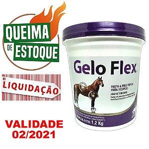 Gelo Flex 1,2kg Pasta A Frio Tópica Equinos (VAL.02/21)