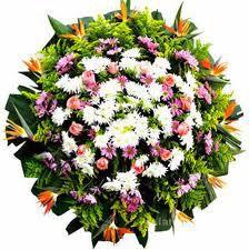 Floricultura Cemitério Morumbi