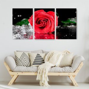 Quadro Decorativo Rosa Vermelha Água 115x57cm Sala Quarto