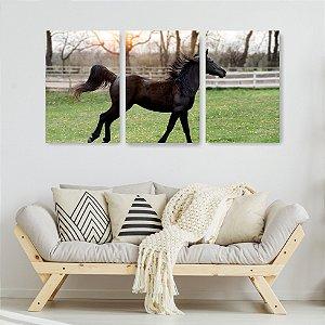 Quadro Decorativo Cavalo Marrom 115x57cm Sala Quarto