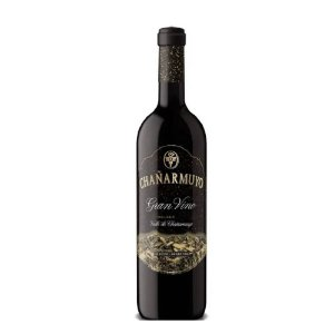 Vinho Tinto Chañarmuyo Gran Malbec 2019 - 750 ml