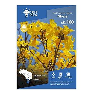 Papel Fotográfico A3 Glossy Brilhante 180g Crie Sempre 100 Folhas