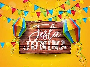 Painel de Festa Infantil Personalizado em Tecido Festa Junina 138x103cm 2