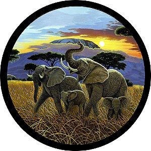 Capa para estepe Ecosport Crossfox + Cabo + Cadeado Elefantes