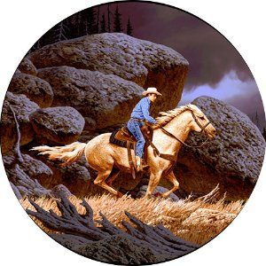 Capa para estepe Ecosport Crossfox + Cabo + Cadeado Cowboy