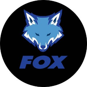 Capa Estepe Pneu Personalizada Especial Crossfox Fox 5