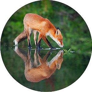 Capa para Estepe Pneu Personalizada Especial Crossfox Fox Raposa 2