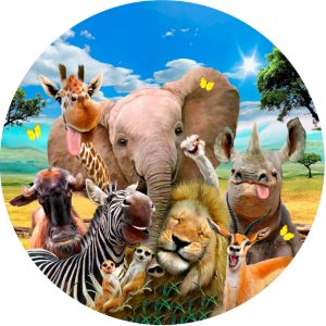 Capa Personalizada para Estepe Ecosport Crossfox Selfie Animal