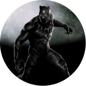 Capa Personalizada para Estepe Ecosport Crossfox Pantera Negra Marvel 2