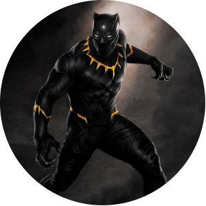 Capa Personalizada para Estepe Ecosport Crossfox Pantera Negra Marvel 7