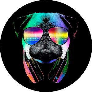 Capa Personalizada para Estepe Ecosport Crossfox Pug