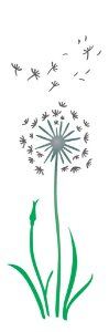 Stencil 10×30 Simples – Flor Dente de Leão – OPA 2222