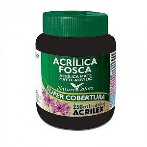 Tinta Acrilica Fosca - Acrilex  250 ml