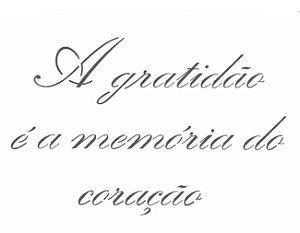 Stencil 15X20 Simples – Frases A Gratidão – OPA 2498