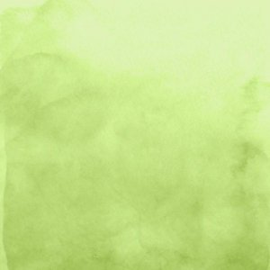 Papel My Memories Para Scrapbook - My Basics Verde Claro MMCMB-07