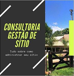 CONSULTORIA GESTÃO DE SÍTIO