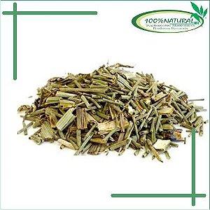 Cavalinha (Equisetum sp.) 100g – 100% Natural