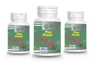CANELA DE VELHO PLUS POWER 60 CAPSULAS RBC 500MG