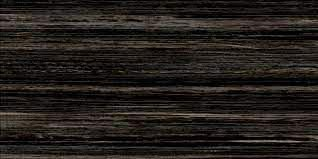 PORCELANATO DELTA 50x100 ERAMOSA BLACK POLIDO M2 (fora d linha)
