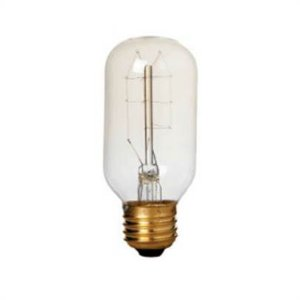 Lampada Filamento De Carbono 40w 110v Branco Quente BCF-T45 CTB