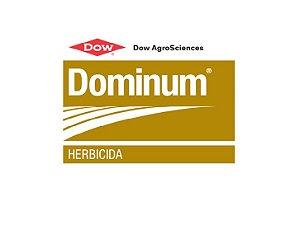 Dominum  - 1LT