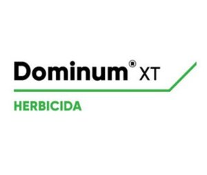 Dominum XT - 10LT