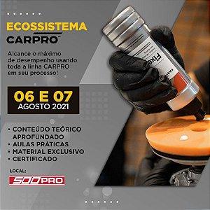 ECOSSISTEMA CARPRO - ESPECIALIZAÇÃO PROFISSIONAL (06 e 07 de Agosto)
