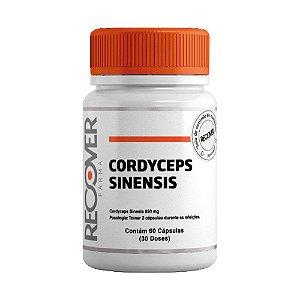 Cordyceps Sinensis 650mg - 60 Cápsulas (30 Doses)