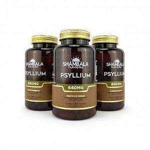 Kit 3 Psyllium 120 cápsulas de 640mg