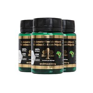 Kit 3 Própolis Verde 85% C/ Vitamina C e E 60 cápsulas 500mg
