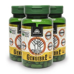 Kit 3x Gengibre orgânico 90cps de 350mg, Capsulas Veganas