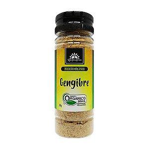 Gengibre pó orgânico 50g