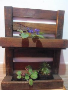 Rack para plantas
