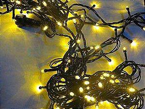 Cordão Fixo Blindado com 100 LEDs - Fio Verde 220V Amarelo