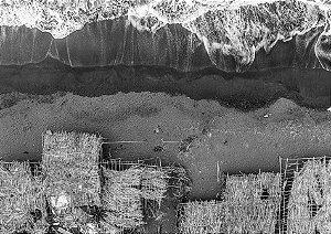 Fotografia aérea de mar, areia e barracos