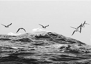 Aves sobrevoando o mar em preto e branco