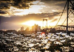 Pôr do sol na ponte para o jardim dos sonhos em Florianópolis