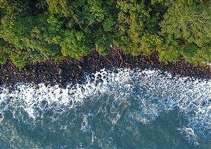 Foto aérea em Bananas/SP