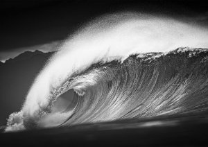Pipeline perfection B/W