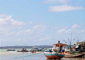 Rotina da tarde no porto de Baía Formosa