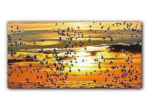 Panorâmico Revoada de Pássaros