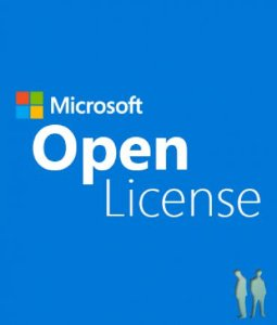 SQL Server Standard Core 2017 SNGL OLP 2 LIC